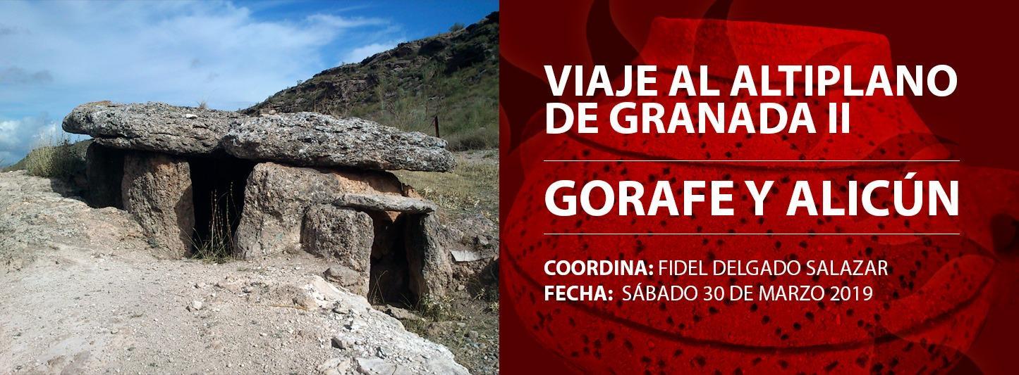 Viaje al Altiplano de Granada II: Gorafe y Alicún (30 de Marzo 2019)